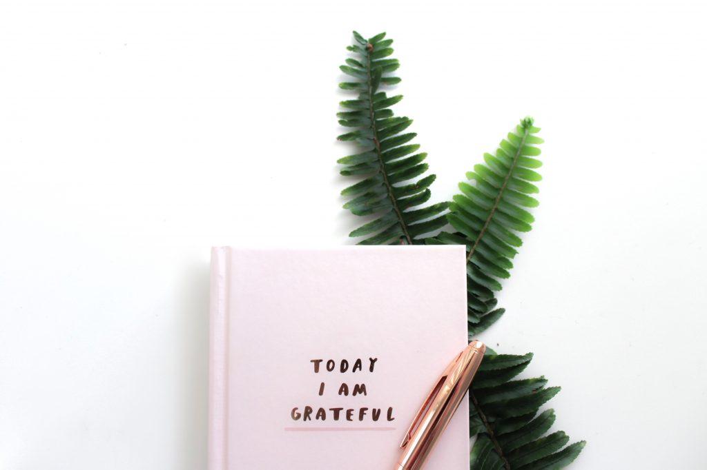 Reiki principles - gratitude